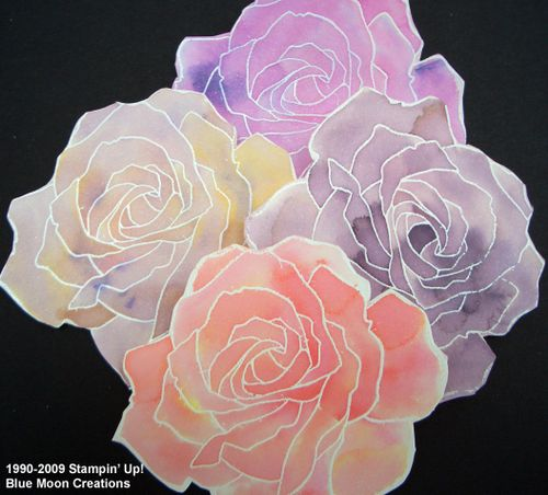 Watercolor roses 059