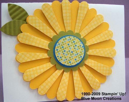 Scallop circle sunflower 002