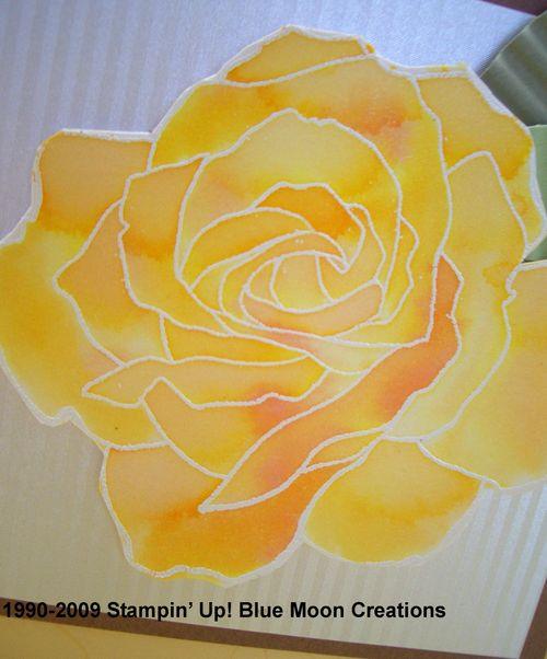 Watercolor Roses 039
