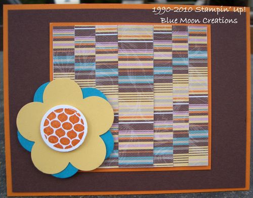 Bardella and quilt block 006