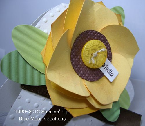 Sunflower Hat, Garden Glove 002