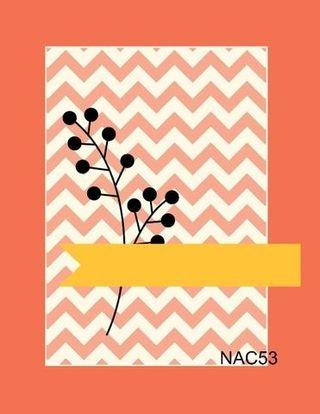 NAC 53
