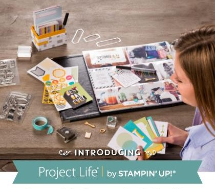 Project Life 2