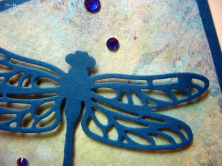 Dragonfly dreams 040