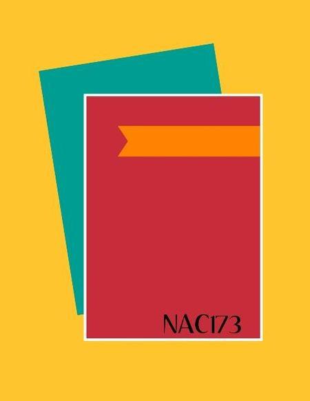 NAC173