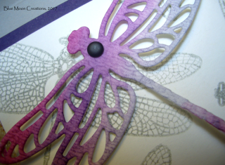 Ombre Dragonfly Dreams close up